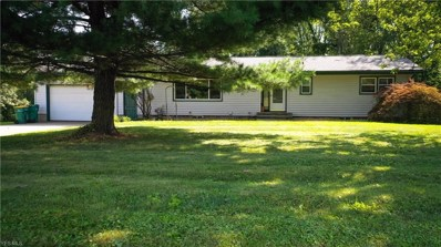 3351 Friendsville Road, Wooster, OH 44691 - #: 4127563