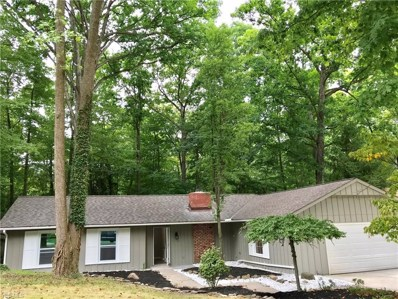 12612 The Bluffs, Strongsville, OH 44136 - #: 4128073