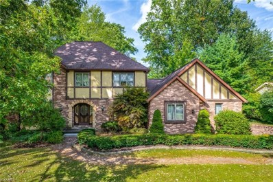 923 Oakwood Drive, Alliance, OH 44601 - #: 4128181