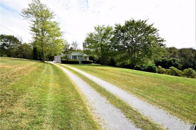 15978 Annesley Road, East Liverpool, OH 43920 - #: 4128387