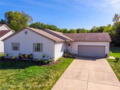 707 Cranberry Creek, Youngstown, OH 44512 - #: 4129025