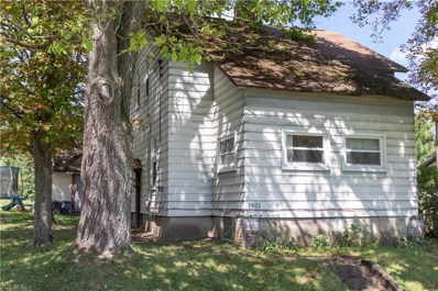 7803 Rose Avenue, Masury, OH 44438 - #: 4129310