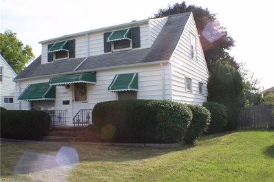 4619 W 156th Street, Cleveland, OH 44135 - #: 4129565