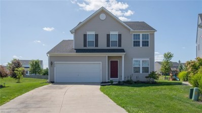 9036 Lyman Court, North Ridgeville, OH 44039 - #: 4129898