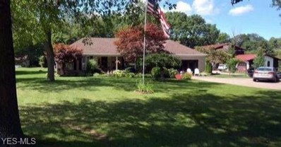 7810 Pyle South Amherst Road, Amherst, OH 44001 - #: 4130360