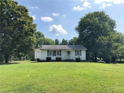 296 State Route 183, Atwater, OH 44201 - #: 4130410