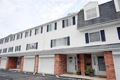 2005 Presidential Parkway UNIT 78, Twinsburg, OH 44087 - #: 4130497