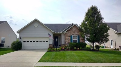 5198 Autumnwood Lane, Brunswick, OH 44212 - #: 4130545