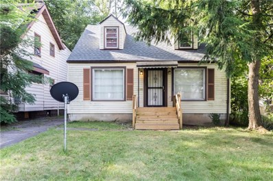 319 Ferndale Avenue, Youngstown, OH 44511 - #: 4131205
