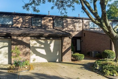 893 Quarry Drive, Akron, OH 44307 - #: 4131265