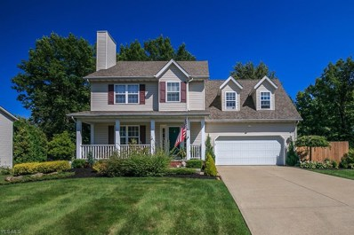 120 Red Pine Drive, Painesville, OH 44077 - #: 4131752