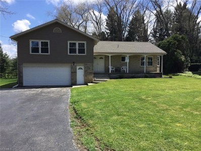 124 Mill Run Drive, Youngstown, OH 44505 - #: 4131933
