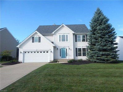 586 Crossings Way, Avon Lake, OH 44012 - #: 4131940