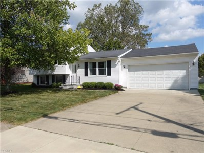 5361 Young Road, Stow, OH 44224 - #: 4132135