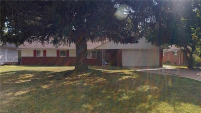 489 Jeannette Drive, Richmond Heights, OH 44143 - #: 4132290