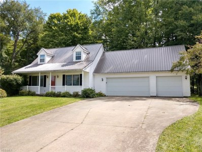 448 Robin Street, Apple Creek, OH 44606 - #: 4132475