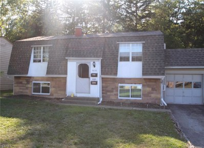 4618 Washington Square Drive, Youngstown, OH 44515 - #: 4132482