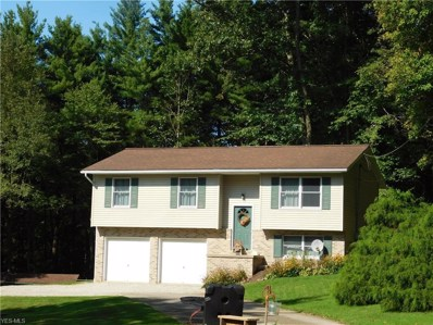 6885 Township Road 129, Millersburg, OH 44654 - #: 4132562