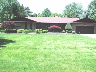 14144 Sunnyside Avenue, Middleburg Heights, OH 44130 - #: 4133314