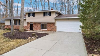 7540 Winding Way, Brecksville, OH 44141 - #: 4133388