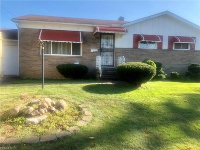 17806 Deforest Avenue, Cleveland, OH 44128 - #: 4133465