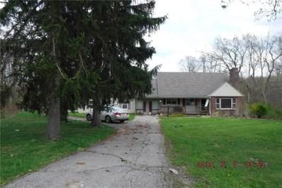 9789 Chamberlin Road, Twinsburg, OH 44087 - #: 4133646