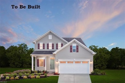 513 Belglove Place, Painesville Township, OH 44077 - #: 4133912