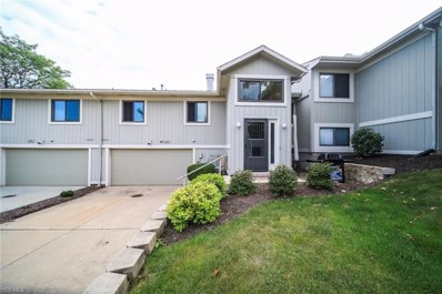 7209 S Excalibur Drive, Concord, OH 44077 - #: 4134242