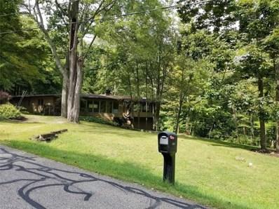 4547 Conestoga Trail, Copley, OH 44321 - #: 4134329