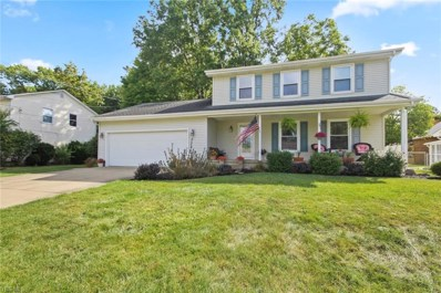 133 Maple Leaf Drive, Youngstown, OH 44515 - #: 4134619