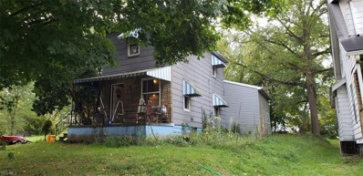 110 Victor Avenue, Niles, OH 44446 - #: 4134781