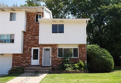 303 University Avenue, Painesville, OH 44077 - #: 4135315