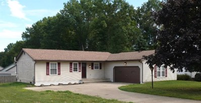 7611 Huntington Drive, Youngstown, OH 44512 - #: 4135365