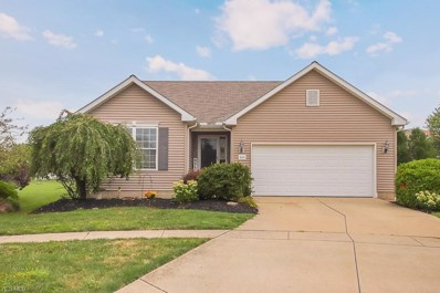 4201 Fairbanks Court, Lorain, OH 44053 - #: 4135613