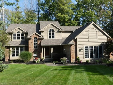 11415 Mourning Dove Place, Concord, OH 44077 - #: 4136293