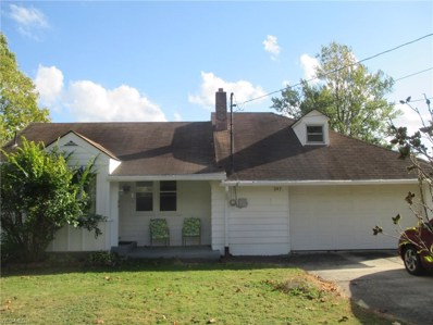 347 Forest Avenue, North Lima, OH 44452 - #: 4136877