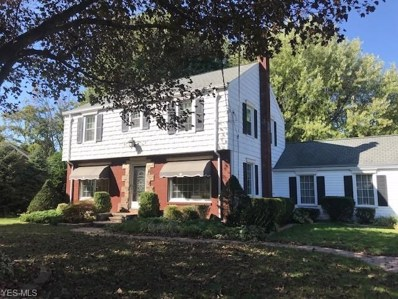 1637 N Lincoln Avenue, Salem, OH 44460 - #: 4136922