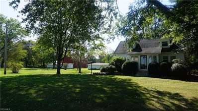 4730 Waterloo Road, Atwater, OH 44201 - #: 4136997