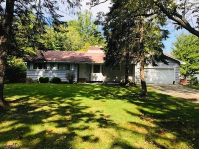 10857 Tanglewood Trail, Concord, OH 44077 - #: 4137211