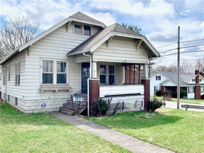 203 E Avondale Avenue, Youngstown, OH 44507 - #: 4137423