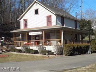 672 N Whitewoman Street, Coshocton, OH 43812 - #: 4137592