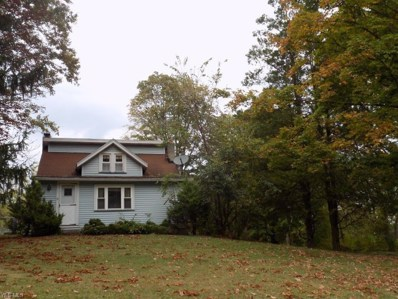 223 State Route 303, Streetsboro, OH 44241 - #: 4138150