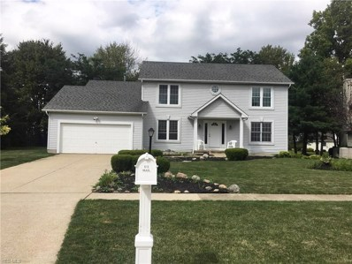 19754 Echo Drive, Strongsville, OH 44149 - #: 4138481