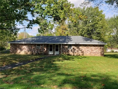 1216 Townsend Avenue, Liberty, OH 44505 - #: 4139623