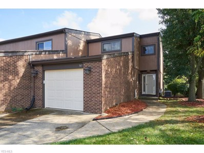 947 Morningstar Drive, Akron, OH 44307 - #: 4139706