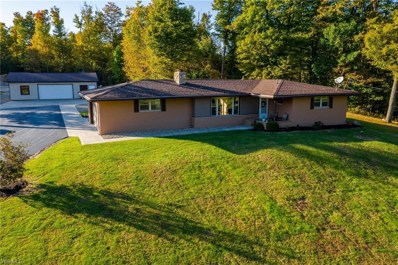 8425 State Route 88, Ravenna, OH 44266 - #: 4139989