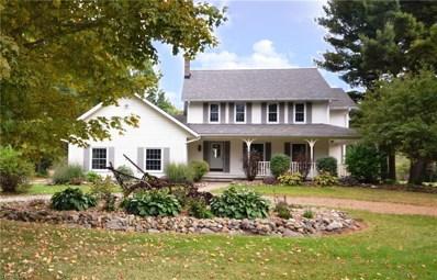 19145 Rapids Road, Hiram, OH 44234 - #: 4140143
