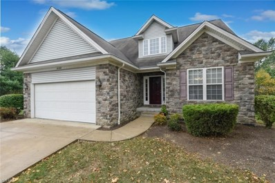 8166 Versailles Place, Macedonia, OH 44056 - #: 4140558