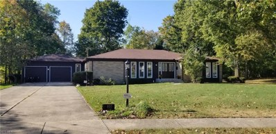 800 Andrews Road, Medina, OH 44256 - #: 4140767