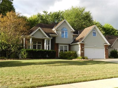 24251 Briar Patch Drive, Olmsted Falls, OH 44138 - #: 4140942